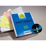 safe_audit_smk_dvd